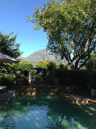 Hedge House: Lovely garden !!