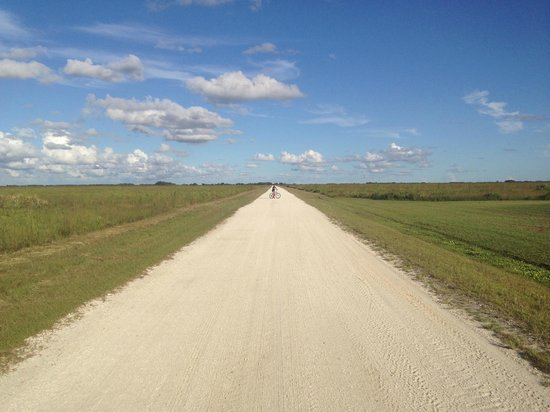 Kissimmee Prairie Preserve State Park: Whole lot of nothing... but VERY beautiful