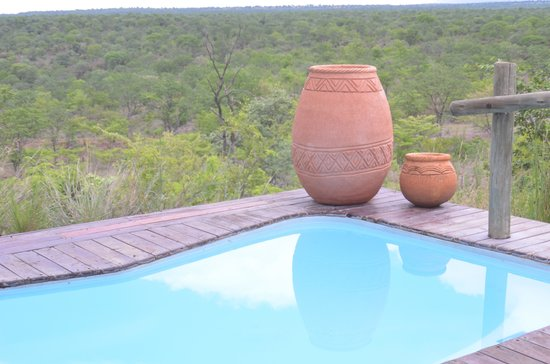 The Elephant Camp: private pool with a view