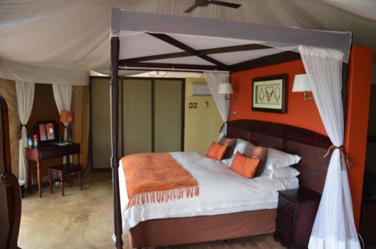 The Elephant Camp: luxury accommodation