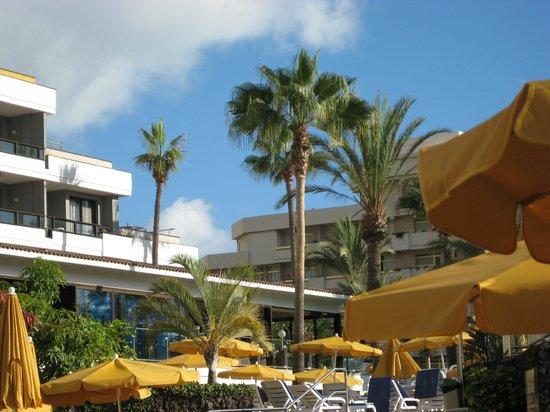 Spring Hotel Bitacora: Pool area