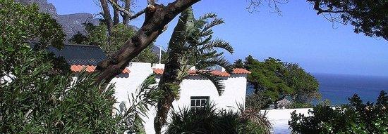 Cape Villa : Garden View