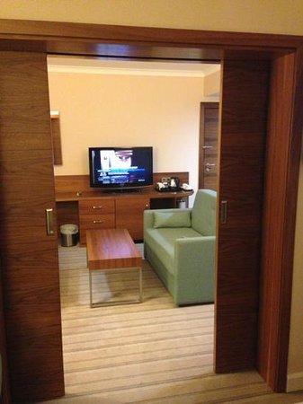 Hilton Garden Inn Hotel Krakow: #311