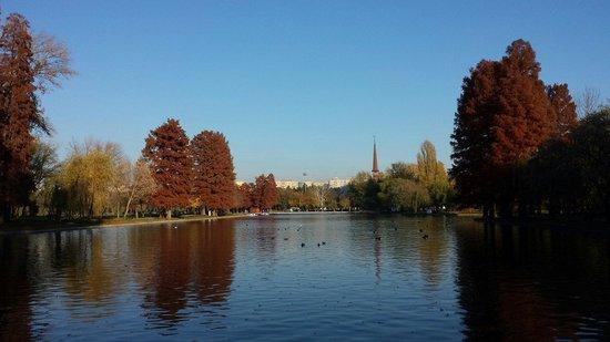 Parcul Alexandru Ioan Cuza: autumn