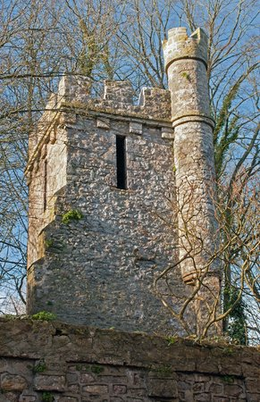 Banwell Castle: Keep