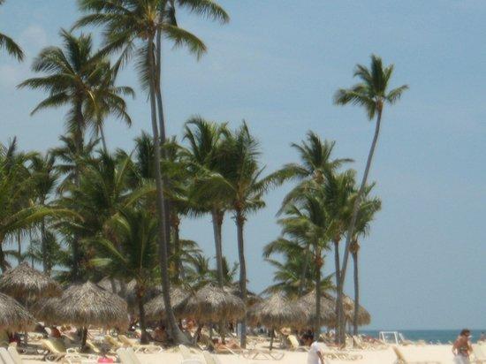 Majestic Elegance Punta Cana: Beautiful, relaxing beach