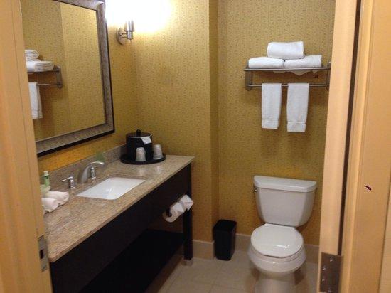 Holiday Inn Express Hotel & Suites Nashville - Opryland: Bathroom