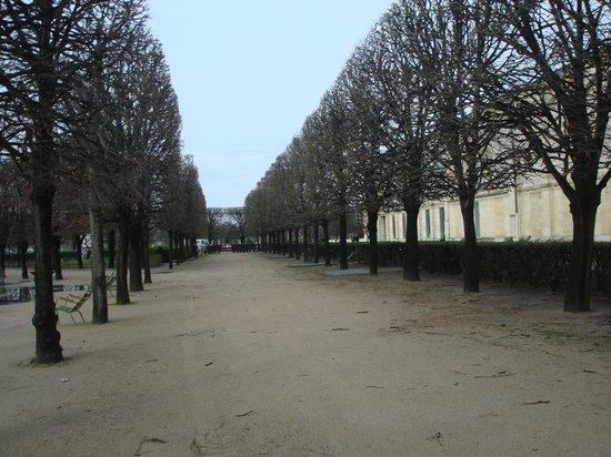 39 grand bassin rond 39 jardins de tuileries paris photo de jardin des tuileries paris - Grand bassin de jardin ...