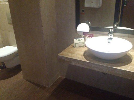 Best Western Plus Bristol Hotel: Baño