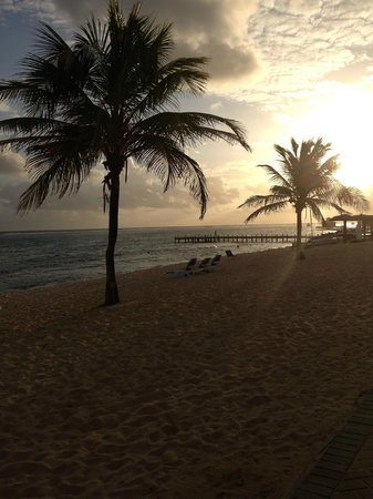 Wyndham Reef Resort : The beach