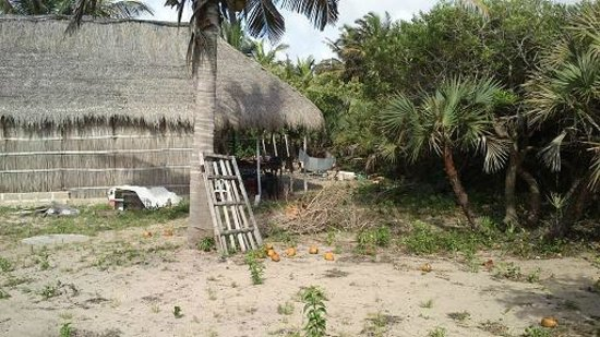 Mango Beach Lodge: view over rubbish dump