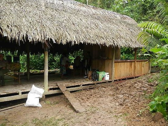 Huaorani Ecolodge: The kitchen/common area at the camp ground