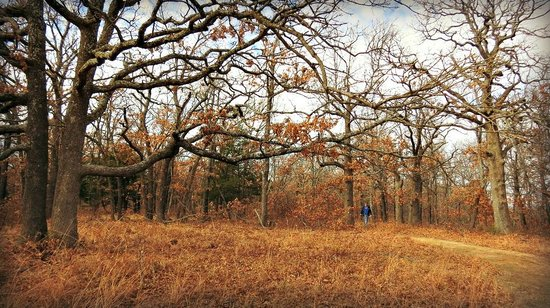Sand Springs, OK: On the trail at Keystone Ancient Forest