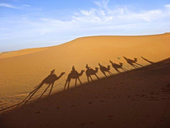 Bivouacs La Belle Etoile: Dunes