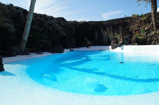 Jameos Del Agua: Lagon situé à l'extérieur de la grotte