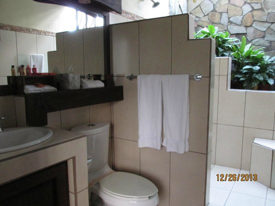 Arenal Springs Resort and Spa: There were plants even in the bathroom.