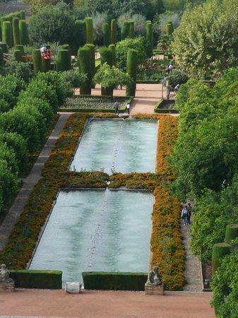 Tour Andalucia International - Day Tours: Cordoba