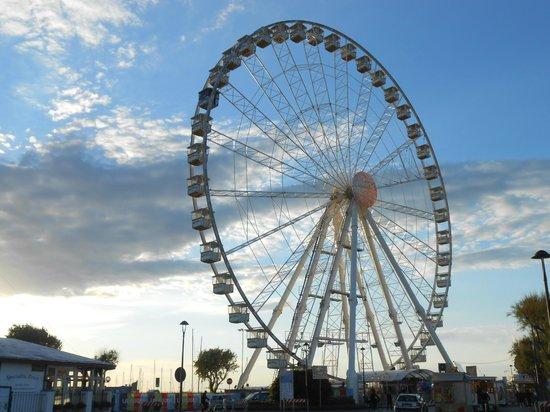 The Wheel of Rimini : ruota