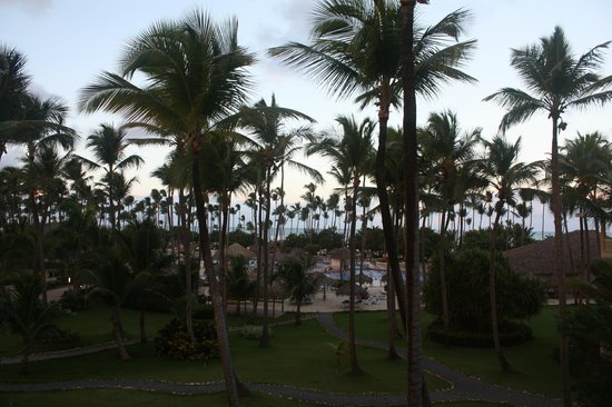 Sirenis Punta Cana Resort Casino & Aquagames: View from Cocotal G204
