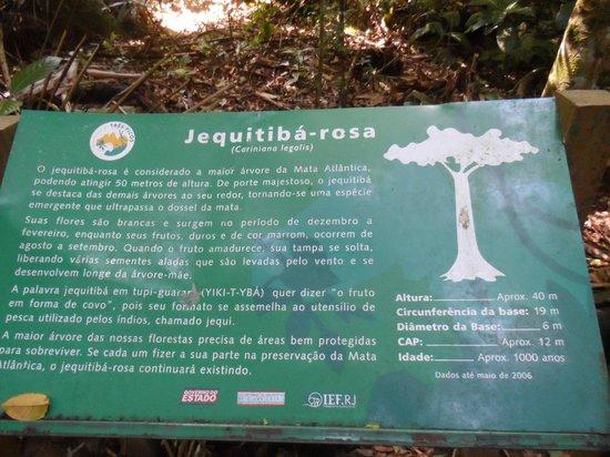 Cachoeiras de Macacu照片