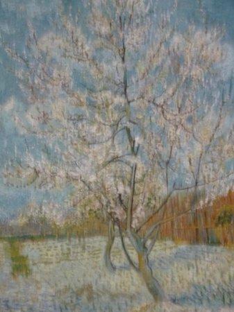 Van-Gogh-Museum: Almond blossom - Vicent Van Gogh