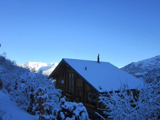 Alpine Comfort: Fresh snow!