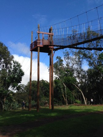 Piiholo Ranch Zipline Tower