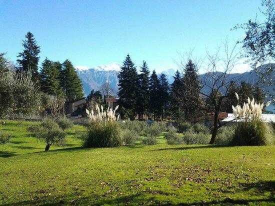 Casa del Portico: The garden