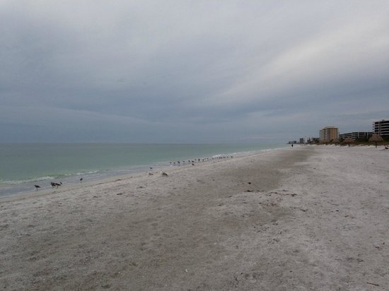 Resort at Longboat Key Club: Beach