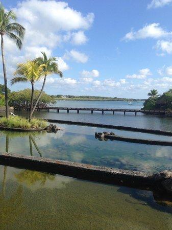 Four Seasons Resort Mauritius at Anahita: Ausblick vom Empfangsgebäude
