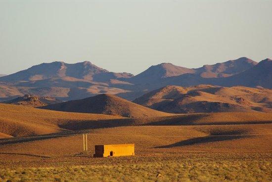 Auberge Kasbah la Datte d'Or Chez Abdellatif: paysage au sud de Skoura