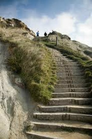 Lulworth Cove Inn Restaurant : The steps to Durdle Door View
