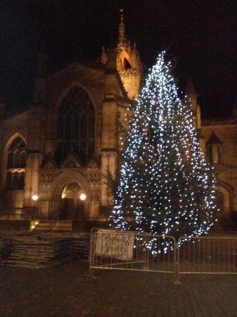 Milla Real: Christmas Tree