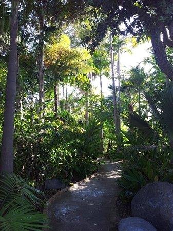 Bahia Resort Hotel: Gartenbereich im Zentrum der Anlage