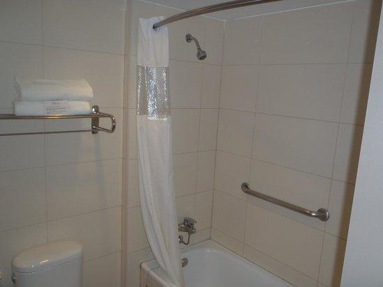 Atton Hotel El Bosque : Shower