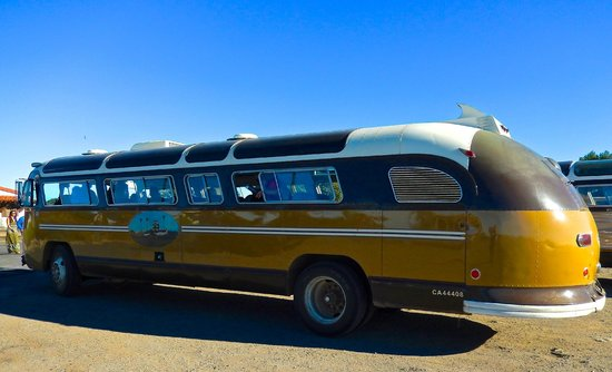 Catalina Expeditions  Tours: Our wonderful Flexbus