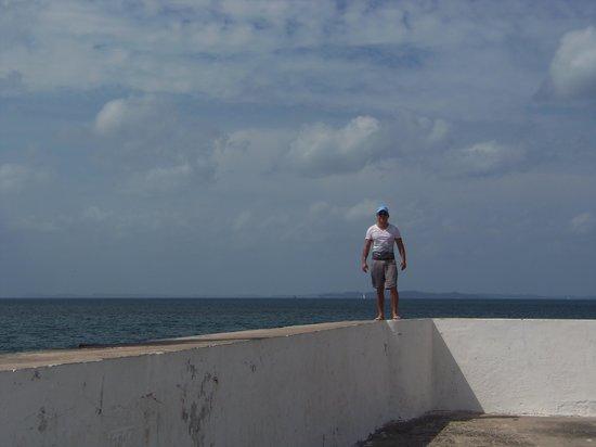 Ponta de Humaita: Vista