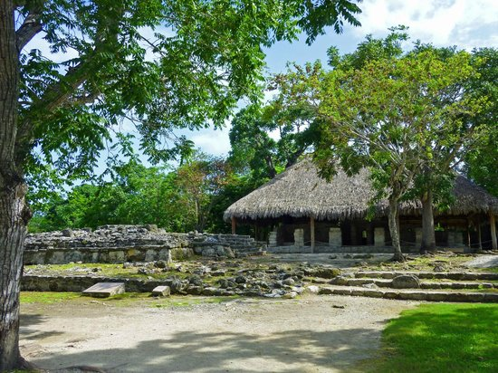San Gervasio Mayan Archaeological Site: Long sleeves shirts recommended (mosquitos)