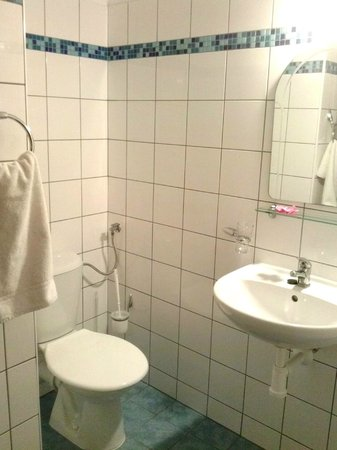 Hotel Bonsai Mikulov: bathroom