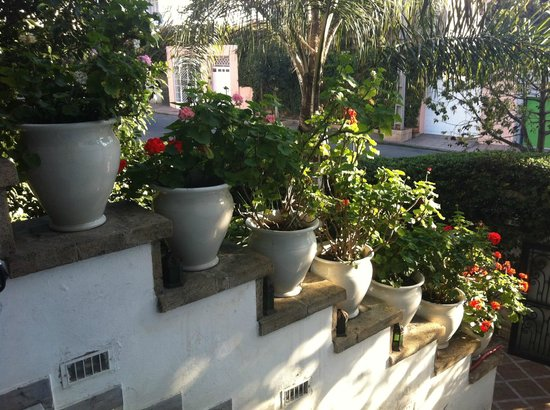 Jnane Sherazade: Сад