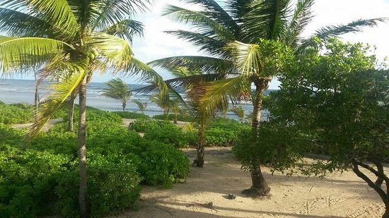 The Palms at Pelican Cove : A glorious view to wake up to!