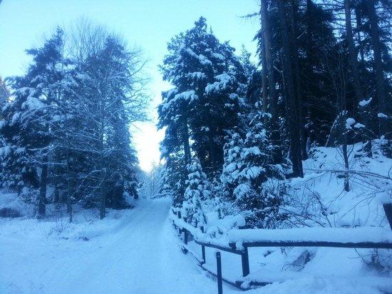 Sentiero panoramico lungo l'Orrido di Pre-Saint-Didier