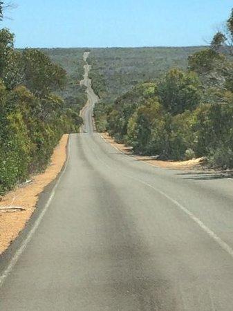 Kangaroo Island Hire a Guide: Road on Kangaroo Island