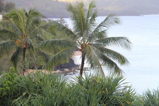 Marc at Princeville Pali Ke Kua : View from the room