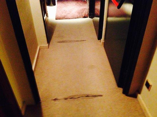 Tryp Valladolid Sofia Parquesol Hotel : La moqueta del pasillo de la 3ª planta