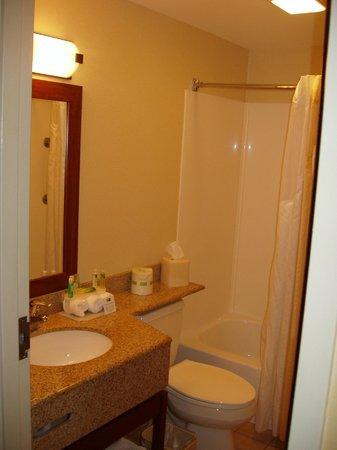 Comfort Inn Lancaster - Rockvale Outlets: Bathroom