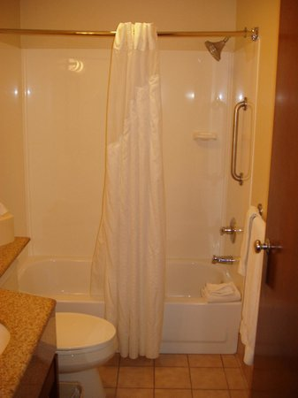 Comfort Inn Lancaster - Rockvale Outlets: Shower/tub