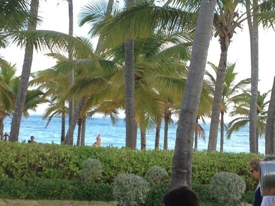 Secrets Royal Beach Punta Cana : beach