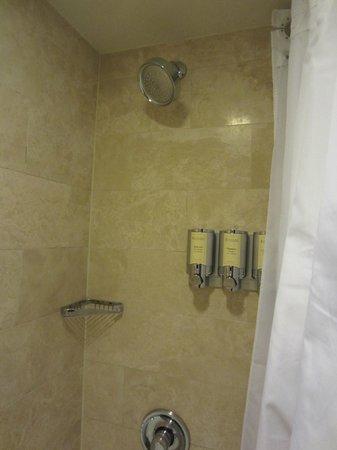 Royal Sonesta Houston Galleria : Shower head with shampoos