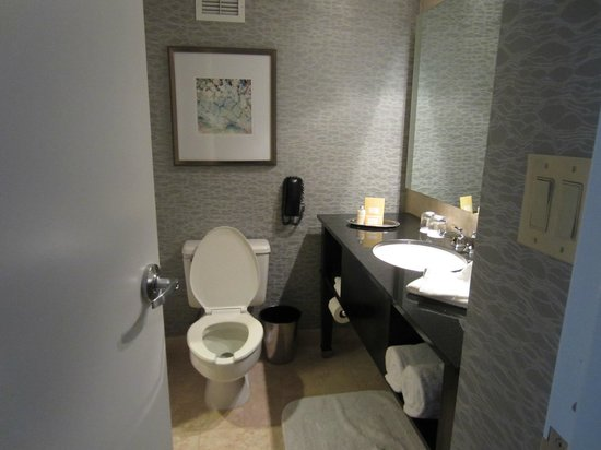 Royal Sonesta Houston Galleria: Normal sized bathroom
